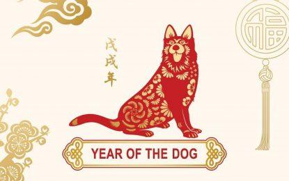 Годината на Кучето – признание, предателство, пари